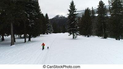 4k, śnieżny, człowiek, las, pies, kolarstwo