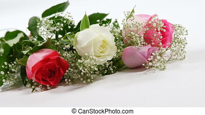 4k, красный, белый, roses, букет, задний план, розовый