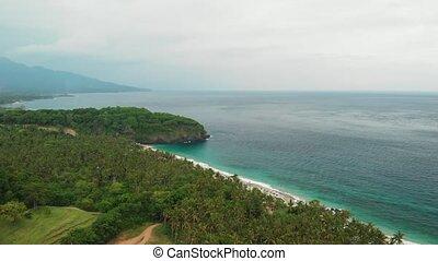 4K aerial drone video of woman on the edge. Tropical beach, mountain, travel concept. Bali island.
