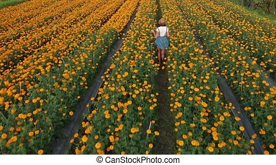 4K aerial flying video of woman on a marigold field. Beautiful travel concept. Bali island.