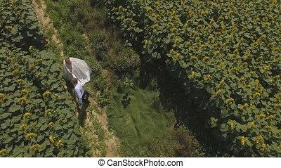 4K aerial footage Groom and bride walking in a field full of sunflowers