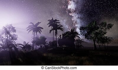 4K Astro of Milky Way Galaxy over Tropical Rainforest....
