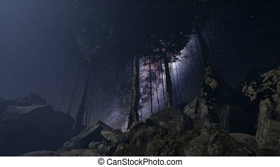 4K Astro of Milky Way Galaxy over Tropical Rainforest.