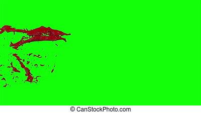 4k Blood Burst Slow Motion (Green Screen) 1