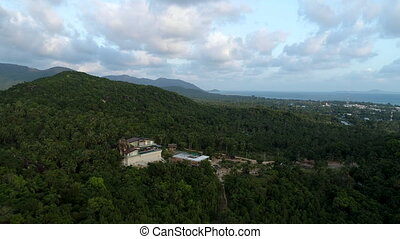 Flying above beautiful lush green jungle with palm trees -...