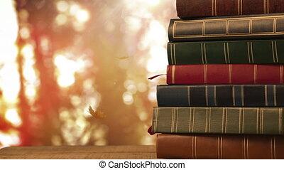 4k, clair, forêt, contre, livres, automne