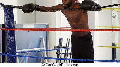 4k, délassant, boxeur, mâle, anneau, boxe