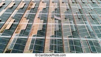 4k, ferme, toit, verre, vert, couvert