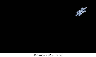 4K. Flying Snowflake On Black Background. Seamless Looping.