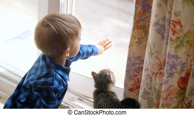 4k footage of little boy opens door on street for domestic cat