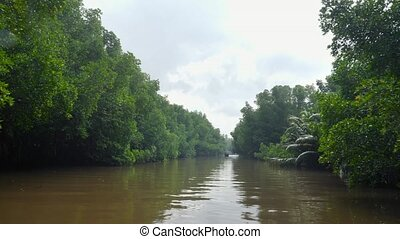 4k footage of sailing on narrow river in the tropical jungle...