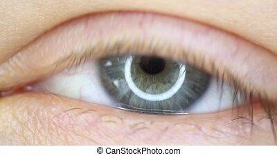 4k macro video of wide opened male green eye close-up