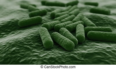 4K Microscopic view of a bacteria colony. Medically accurate with realistic jitter.
