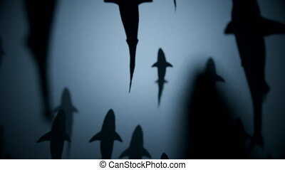 4K Shark Silhouettes Passing Overhead. Realistic CGI...