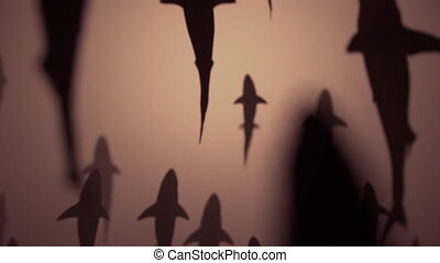 4K Shark Silhouettes Passing Overhead. Realistic CGI...