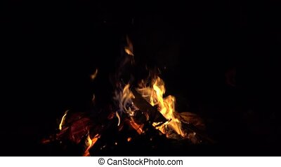 4K shot of a bonfire in the dark. Tossing firewood