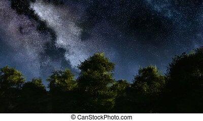 4K TIme Lapse of Stars