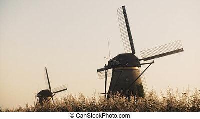 4K Two idyllic Dutch rustic windmills in a field....
