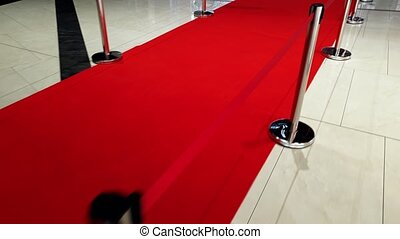 4k video of long red carpet and barriers on movie or theater...