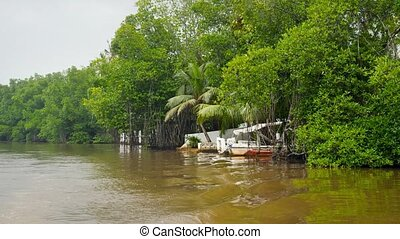 4k video of old motorboat moored at wooden pier on the river at tropical jungle rainforest