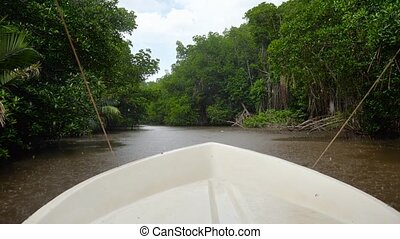 4k video of small boat sailing on the river at mangrove forest while raining in tropical rainforest
