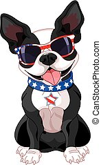 4th of July Boston Terrier - Illustration of cute Boston...