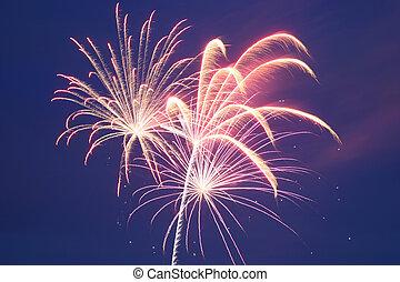 4th of July Fireworks Series - Hunterdon County NJ 2005
