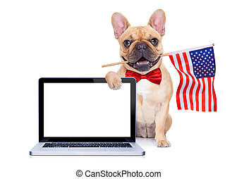 french bulldog dog waving a flag of usa on independence day on 4th of july , isolated on white background, behind a blank empty computer pc screen display
