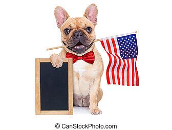 4th oh july dog