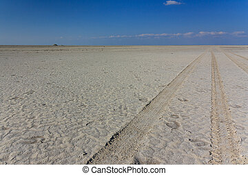 4wd track saltpan - A 4wd track on a saltpan in Africa.