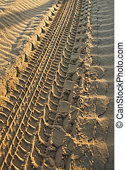 4WD tracks in send on sand dunes area of Do?ana National...