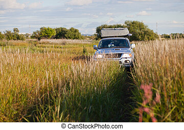 4x4 car in a meadow with high grass
