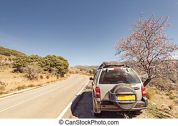 4x4 car on road side in mountains