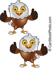 5, aigle, chauve, -, caractère