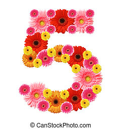 arabic numeral - 5, arabic numeral