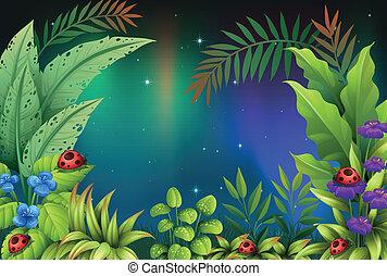 5, bugs, дождь, лес