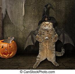 5, fledermaus, halloween, hut, katz