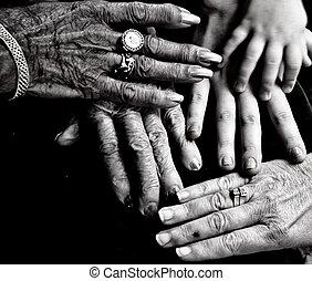 5, generaciones