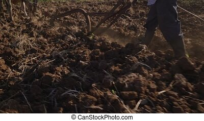 5-Peasant Farmer Pushing Plough And Whipping Ox - Farming...