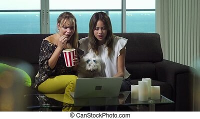 Two hispanic female friends sitting on sofa at home with pet, looking at laptop computer and bidding online to buy an item. The girls win the auction and jumps for joy, hugging each other and smiling. Slowmotion