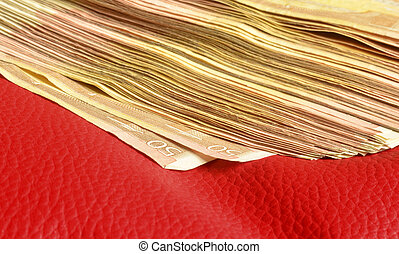 Five thousand of euro in fifty euros bills