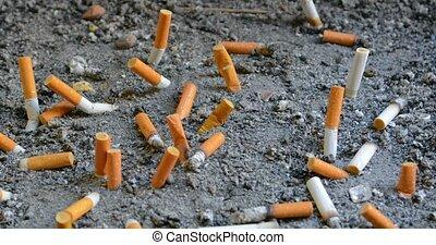 Dozens of extinguished cigarette butts of varying brands,...