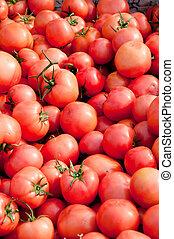 56, pomodori
