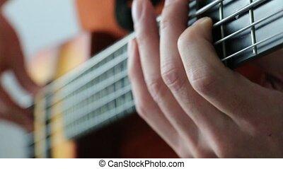 5strings, basse jouant