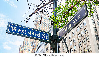 5th ave and W43 corner. Blue color street signs, Manhattan New York downtown