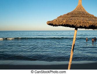 (6), parapluie, plage, naturel