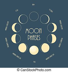 6, phases., 月