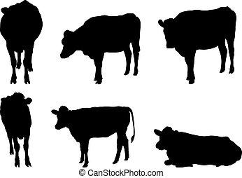 6, vaca, silhuetas
