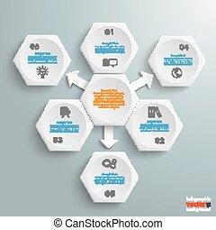 6 White Hexagons 3 Arrows Infographic