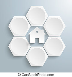 6 White Hexagons Cycle House